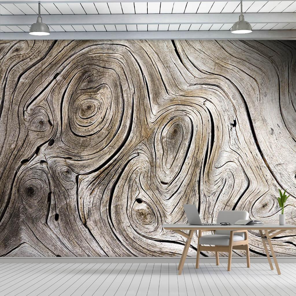 Girdap şekilli ağaç halkaları rustik dokulu ahşap duvar kağıdı