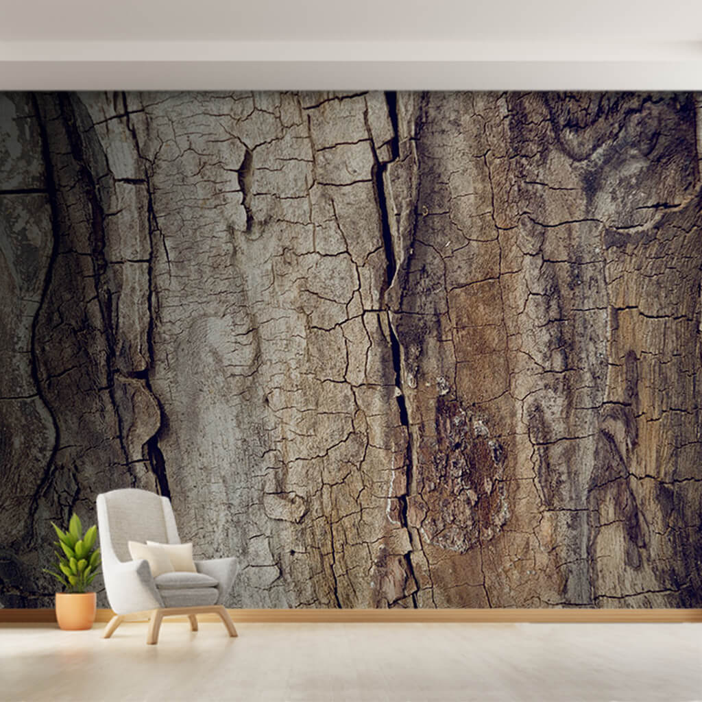 Old walnut tree trunk detail mud textured custom wall mural