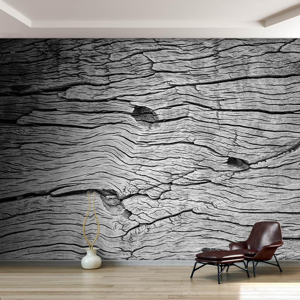Siyah beyaz ağaç gövdesi kabuğu dokulu ahşap duvar kağıdı