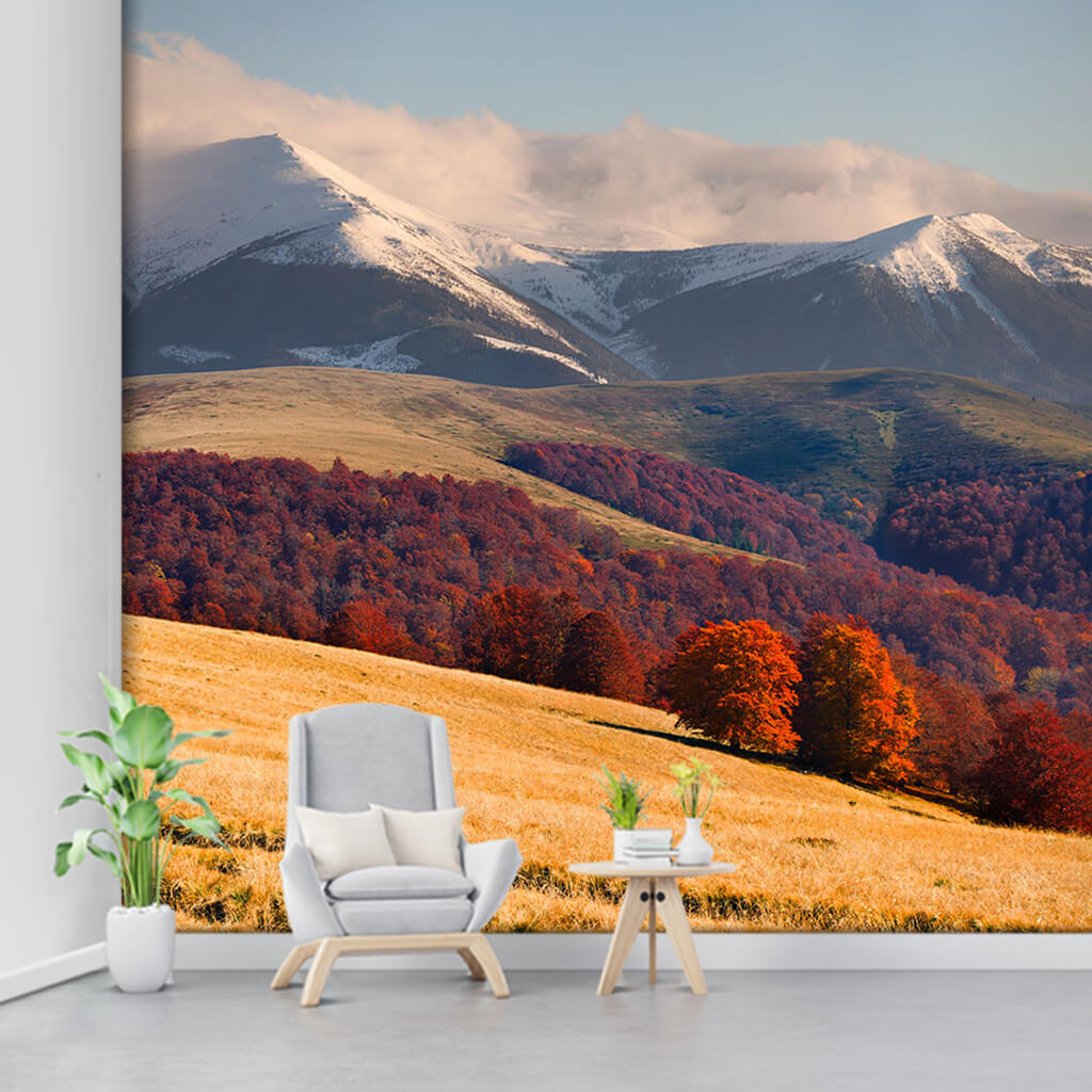 Autumn and nature landscape Carpathian mountains wall mural