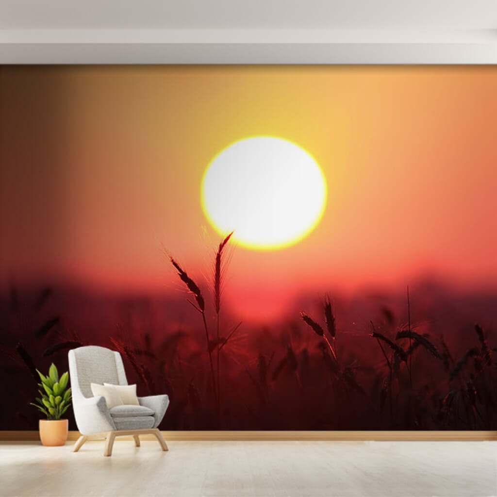 A yellow spike in a wheat field and red sky custom wall mural
