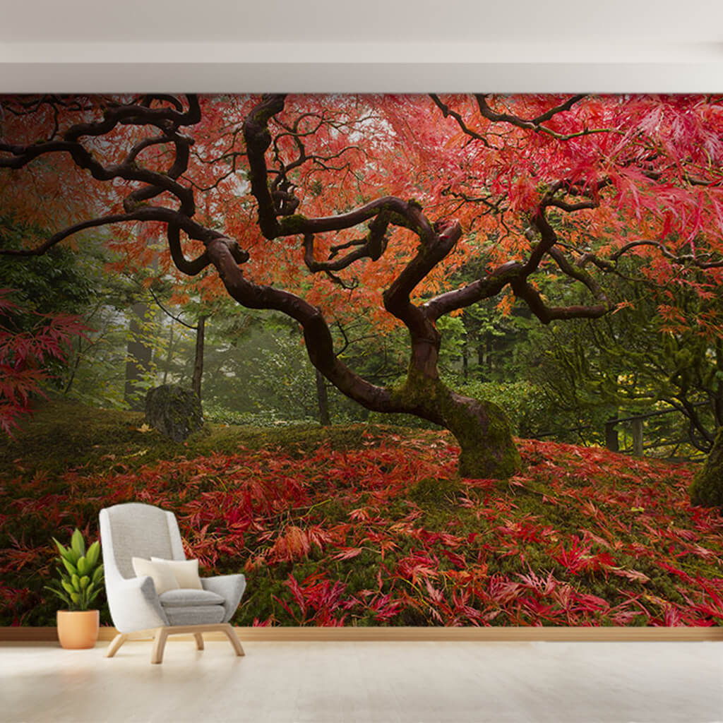 Authentic Japanese garden with red leaves custom wall mural