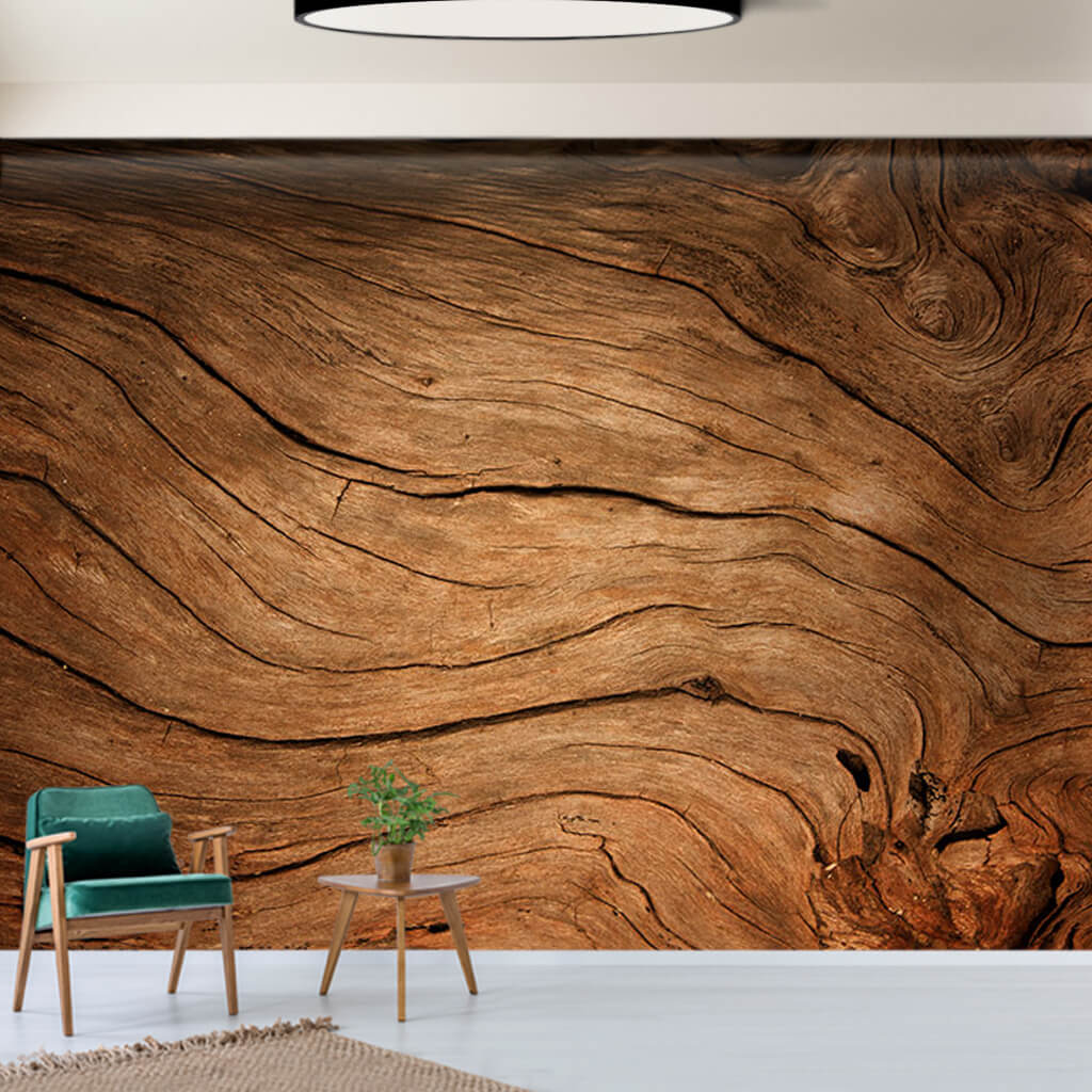 Old tree cross section wavy cracked billet on wood wall mural